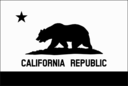 Flag Of California Thin Border Monochrome Solid