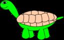 Tortoisestage5