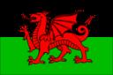 Cymru Flag Wales