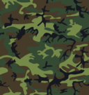 Camouflage Army Print