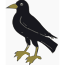 download Crow clipart image with 45 hue color