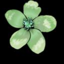 Apple Blossom Clipart