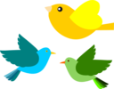 Passarinhos Birds