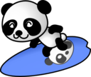 Surfer Panda