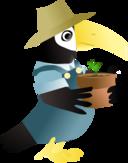 Toucan In The Garden