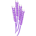 download Wheat clipart image with 225 hue color