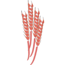 download Wheat clipart image with 315 hue color