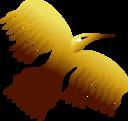 Phoenix Bird 1