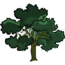 download Oak Tree clipart image with 45 hue color
