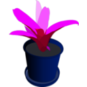 download Bromeliad In A Pot clipart image with 225 hue color