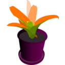 download Bromeliad In A Pot clipart image with 315 hue color