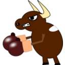 Fighting Cow