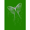download Bright Butterfly clipart image with 225 hue color