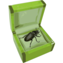 download Beetle In A Box clipart image with 45 hue color