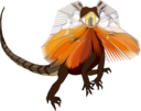 Frill Necked Lizard Dragon