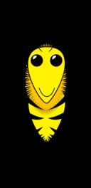 Wax Wild Bee