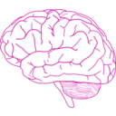 download Brain Profile 2 clipart image with 315 hue color