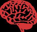 Brain Profile 2