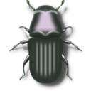 download Pine Beetle clipart image with 90 hue color