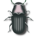 download Pine Beetle clipart image with 135 hue color