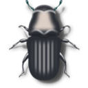 download Pine Beetle clipart image with 180 hue color
