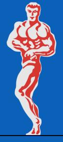 Bodybuilder 2 By Rones