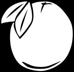 Simple Fruit Orange Clipart i2Clipart